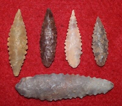 5 nice serrated ovate Sahara Neolithic points
