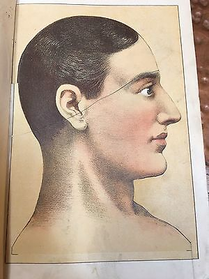 Der Haus-Arzt 1896 German Medical Book with Illustrations
