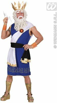 Zeus Costume Large for Toga Party Rome Sparticus Fancy Dress