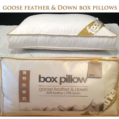 New GOOSE / DUCK Feather & Down Filling BOX Pillow Anti-Allergy Box Pillow
