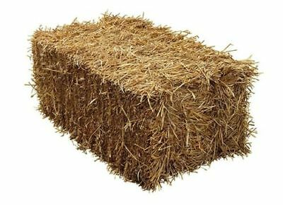 Handy Size Barley Straw Bale - 16kg, compressed to 90cm x 50cm x 40cm. Boxed.