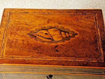 ANTIQUE INLAID WOOD TEA CADDY Conch Shell Inlay on Lid