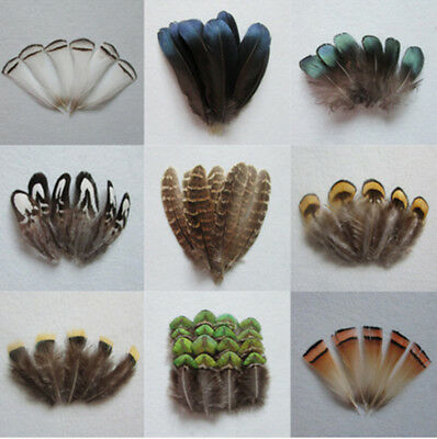 Wholesale 10-1000PCS 2-15cm/1-6inches Pheasant & Peacock Feathers DIY