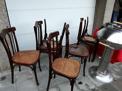 Lot de Chaises Thonet