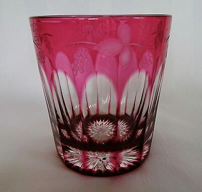 Cranberry Etched Tumbler Drinking Glass