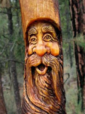 Tree Gnome Wood Spirit Carving Carved Forest Face Knot Head Folk Art Sculpture