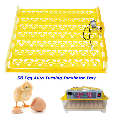 56 Chicken Eggs Turner Automatic Duck Quail Bird Poultry Egg Incubator Tray New