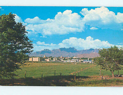 Unused Pre-1980 NEW MEXICO STATE UNIVERSITY University Park New Mexico NM L6651