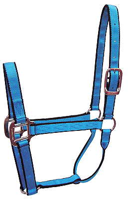 Hamilton Nylon Quality Halter for 100 to 200-Pound Foal/Mini Horse, 3/4-Inch, Ne