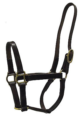 Hamilton 1-Inch Leather Quality Halter, Yearling Size, Fits 300 to 500-Pound, Ha