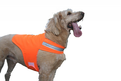 Dog Not Gone Visibility Products Safety Dog Vest, Size 38, Hunter Orange