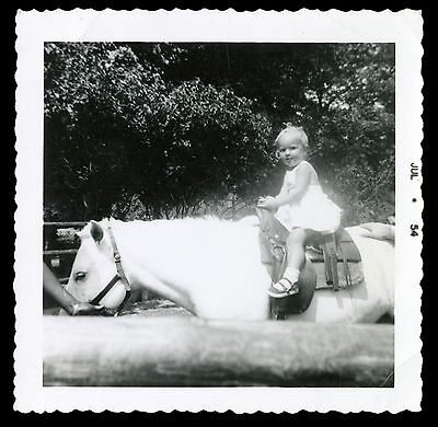 vintage photo 1954 1950s little girl in sunlight rides on white pony toddler