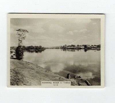 Manning River, Taree, NSW Cigarette Card 1925