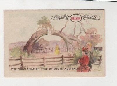 Atlantic Petrol - Proclamation Tree of South Australia