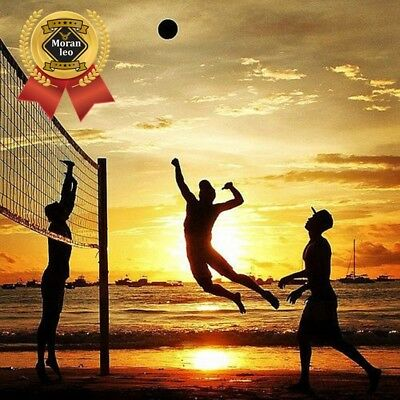 Volleyball Net Regulation Heavy Duty Quality Sport Set 32L' x 3W' Professional