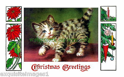Antique Christmas Art~Poinsettias~Ornament~Sweet Kitty Cat~NEW Large Note Cards