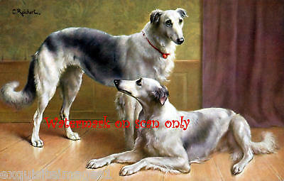 C.Reichert~Russian Wolfhounds~Borzoi NEW Lge Note Cards