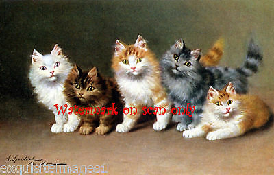 Antique Art~S. Sperlich~Five Spunky Kittens~ NEW Lge. Note Cards
