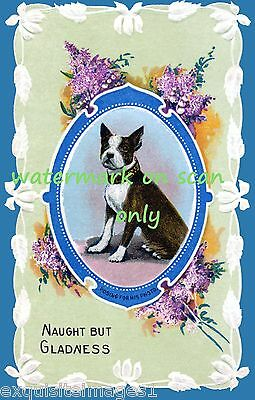 """Vintage Art~""""Boston Terrier Posing for Photo""""~Greetings~ NEW Large Note Cards"""