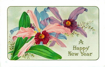 Vintage New Year Greetings~Orchid Flowers Pink & Purple~NEW Large Note Cards