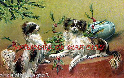 Christmas Papillon Dogs~ NEW Large Christmas Note Cards