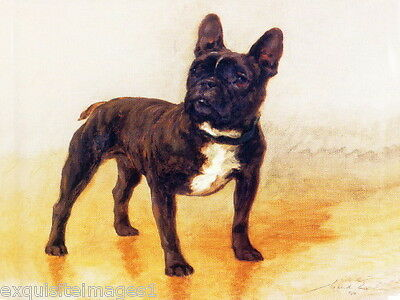 1910 Maud Earl~Brindle French Bulldog Puppy Puppies Dog Dogs~NEW Lge Note Cards
