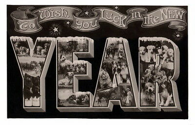 Antique Photos New Year~Collage Dog Dogs~Horses~People~Unique~NEW Lge Note Cards