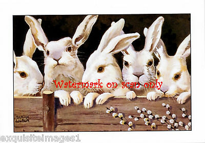 Ulrich Weber~Five White Rabbits~NEW Note Cards