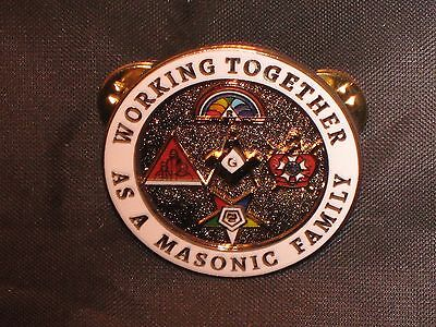 Masonic Family Lapel Tac Pin Demolay Rainbow Girls OES Job's Daughters NEW!