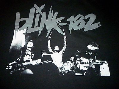 Blink 182 Tour Shirt ( Used Size M ) Very Nice Condition!!!
