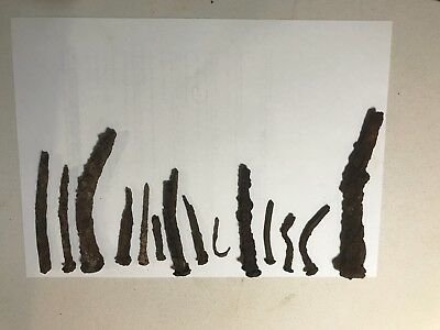Convict nail collection including fish hook