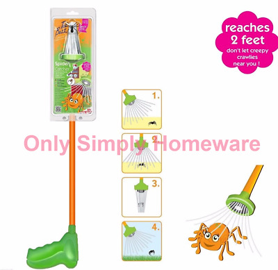 The Buzz Spider Catcher Humanely Remove Spiders, Insects, Moths Trap Friendly