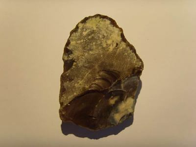 Palaeolithic -  Large 'Acheulian'  scraper - UK found