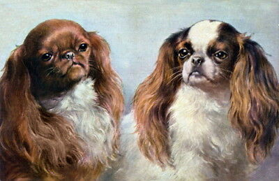 Antique Art~Two Cavalier King Charles Spaniel Puppy Dog Profiles~NEW Note Cards