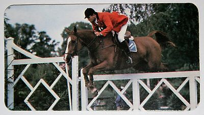 Show Jumping   Harvey Smith 'V'   Yorkshire   Colour Photo Card  VGC