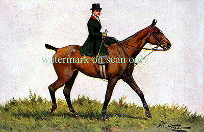 Antique Art~Aristocratic Horse Woman~Sidesaddle~Equestrian~NEW Large Note Cards
