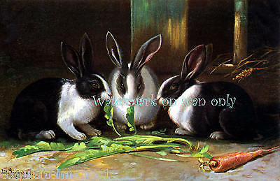 Antique Art~Black & White Rabbits Eat Carrot Tops~Rich Colors~NEW Lge Note Cards