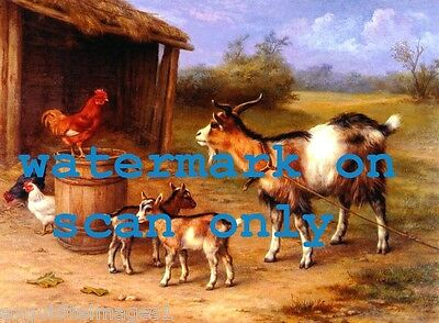 c1920 E.Hunt~Rooster~Chickens~Goats in Farmyard Scene~NEW Large Note Cards
