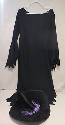 Witch Halloween Costume One Size Fits All