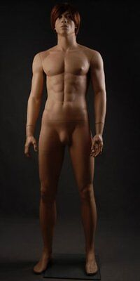 Realistic Male Mannequin, Includes Steel Base & Rods, Made of Fiberglass (gm25)