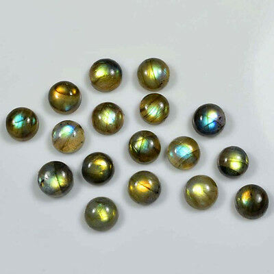 AAA Quality 50 Pc Natural Labradorite 8x8 mm Round Plain Cabochon Loose Gemstone