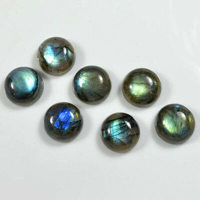 AAA Quality 20 Pc Natural Labradorite 14x14 mm Round Cabochon Loose Gemstone