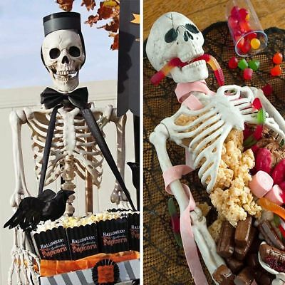 Halloween 3/5ft  life size poseable skeleton Perfect decoration for parties
