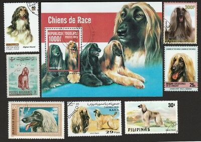 NEW ** AFGHAN HOUND ** Gorgeous Int'l Dog Postage Stamps  **Great Gift Idea**