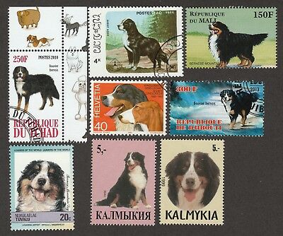 BERNESE MOUNTAIN DOG - 7 International Postage Stamps  **Great Gift Idea**