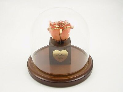 Enchanted 24k Gold Dipped Pink Rose Bloom Valentine's Day Gift