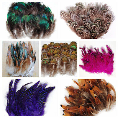 """Feather PLUMAGE Assorted 2""""-8"""" Peacock & Pheasant 100-500 Pcs; Halloween/Costume"""