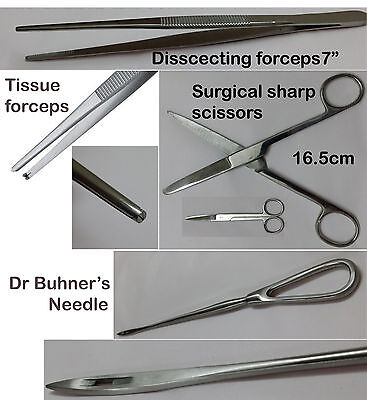 """Operating Dissecting Dressing Scissors 6.5"""" Straight Sharp Sharp Surgical"""