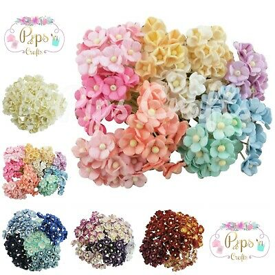 Beautiful Mulberry Paper Sweetheart Blossom Flowers On Stem 10mm Card Crafts