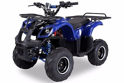 ATV Kinderquad Kinder Quad S-8 Farmer Elektro 1000 Watt NEU